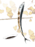 秋刀魚いかがでしょうか。