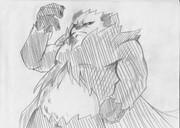 2B鉛筆で、ゴロンダ描いてみた