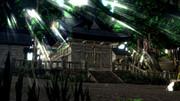 木漏れ日神社