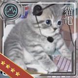 ソナー猫電