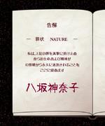 蓬莱人形殺人事件~NATURE~