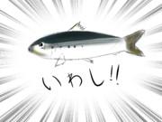 いわし!!
