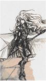麗人の騎士