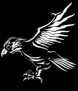 鷹のトライバル