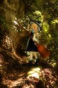 森の中の魔法使い