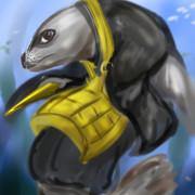 護摩符海豹(水中)