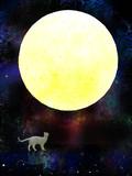 月と猫_改訂版
