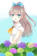 紫陽花と熊野