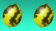 立体視画像47「フラクタレモン」