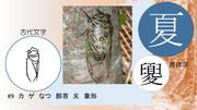 夏~漢字物騙静止画編#9