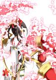 にぼし生誕祭