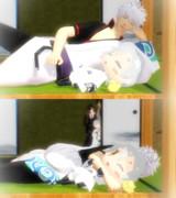 銀ちゃんとチビ鶴丸はお昼寝中