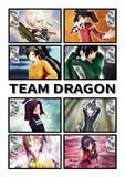 チーム・ドラゴン