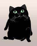 MUR黒猫
