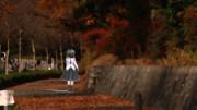 紅葉の歩道が似合うガスマスク蓮子