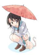 小野寺さんと雨宿り猫と