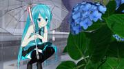 紫陽花と雨おn(グホアッ