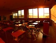 パキケファロサウルス×夕暮れの教室