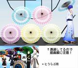 【試作】夏用の和傘&おまけ