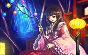 蓬莱山輝夜と玉の枝