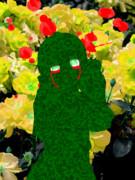 【1日】凶暴に美しく 嫉妬の花は咲き乱れ【1パル】