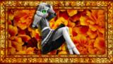 """【1日】Anyone has """"the flower"""" in their mind【1パル】"""