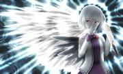 「片翼の白鷺」