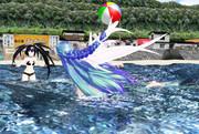 夏の海での事故