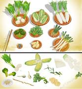 冬野菜セットver1.0