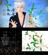 金木犀、銀木犀【MMDアクセサリ配布】