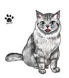 でふぉるめ猫19