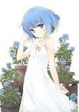 青いバラの少女
