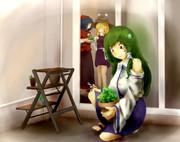 パセリの盆栽