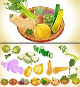 洋野菜セットver1.0