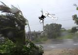 台風に吹き飛ばされる白カネキ