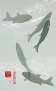 清流と泳ぐ魚 01