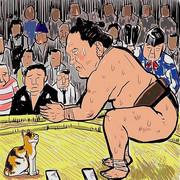 横綱白鵬 猫だましを決める!