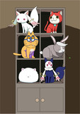 棚猫&棚兎