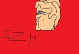 SZHの横顔