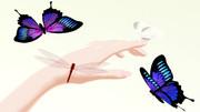 【MMD】自動ではばたく蝶トンボ【モデル配布あり】