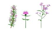 【MMD植物】お花3種セット【配布】