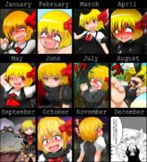 【2015年】一年ルーミア進化録