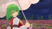 夜の散歩with花の妖怪