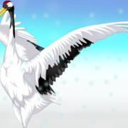 また描いてみた丹頂鶴