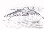 cosmo tigre Ⅱ