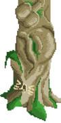 イキ杉(樹齢810年)の幹
