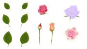 【フリー素材】バラの部品
