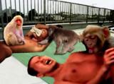 突然猿に襲撃された先輩と遠野