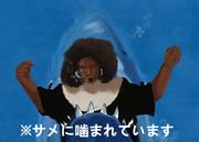 天使にサメ映画を