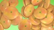 オレンジのパールコイン